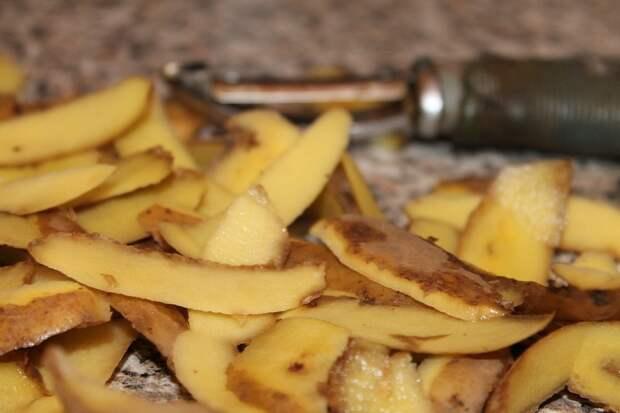 картофельные очистки