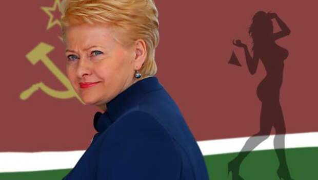 Прощай, Грибаускайте! Литва получит нового президента взамен старой русофобки