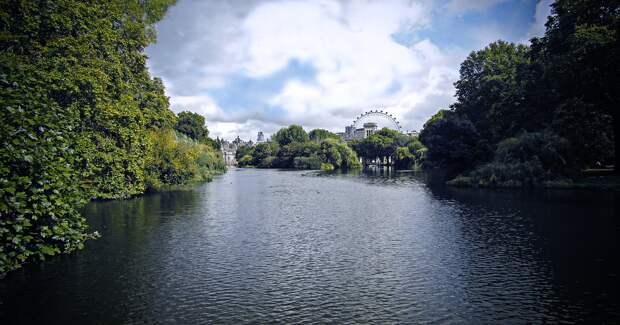 Эксперты назвали самые красивые британские парки