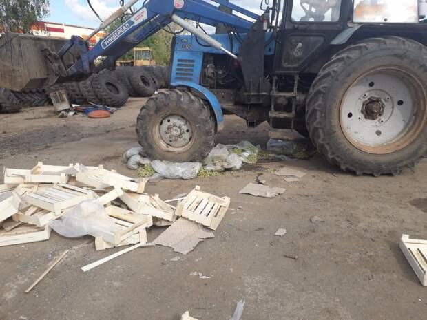 Почти 200 кг подозрительного винограда уничтожили в Удмуртии