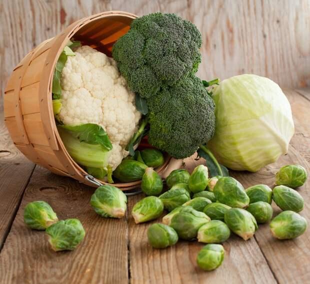 польза капусты свежей