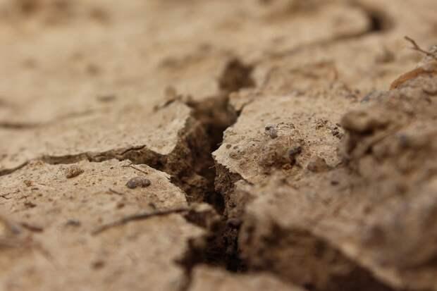 Еще более сильная засуха грозит Крыму через два года