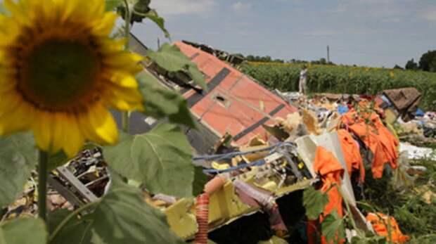 """США """"припёрли к стенке"""" по МН17: Эксперт показал уникальные фото после крушения"""