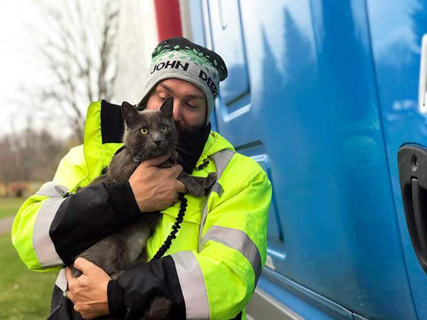 Через два месяца и 2000 км хозяин и кот снова воссоединились!