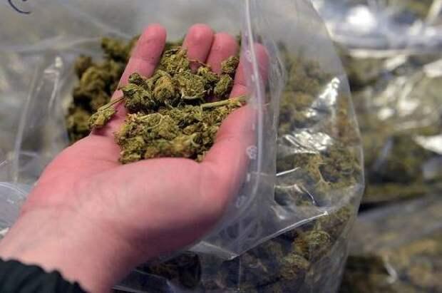 Марихуану на поезде как шоркать марихуану