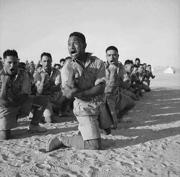 Боевой танец новозеландского батальона маори в пустыне