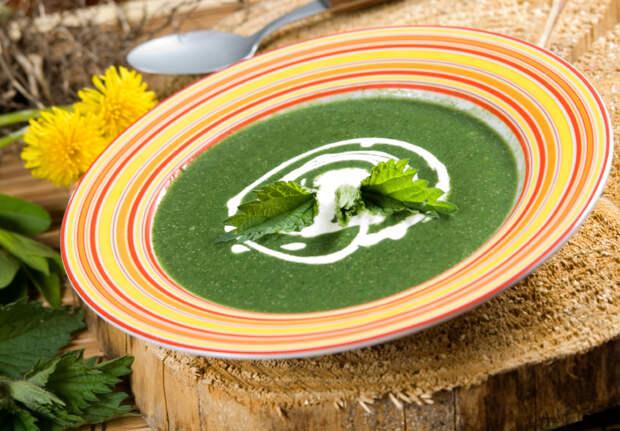 Крапива на вашем столе — 4 быстрых, вкусных и невероятно полезных рецепта!