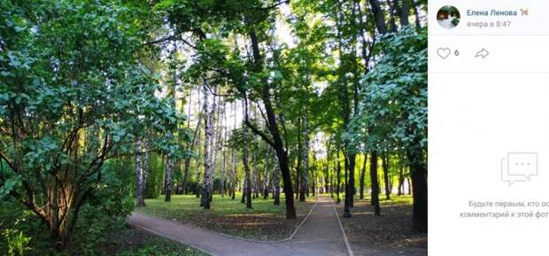 Фото дня: прогулка по Петровскому парку