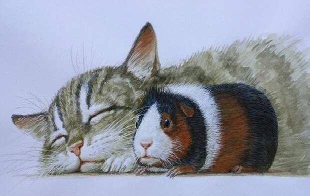 Графический цикл «Коты»Автор: Владимир Стахеев.