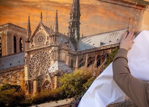 Notre-Dame de Paris, переулок Радищева,Питер