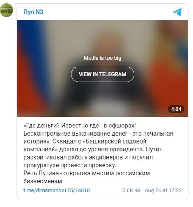 """Путин разоблачил компанию, посягнувшую на Куштау: """"Где деньги? Известно где. В офшорах"""""""