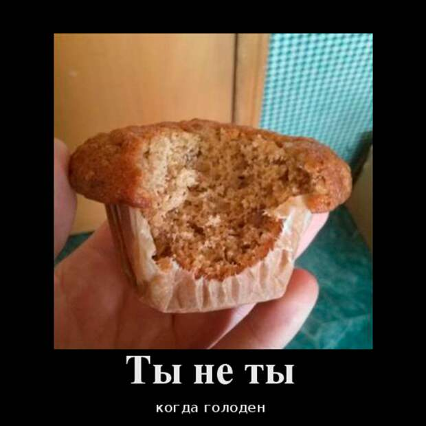 Ты - не ты, когда голоден