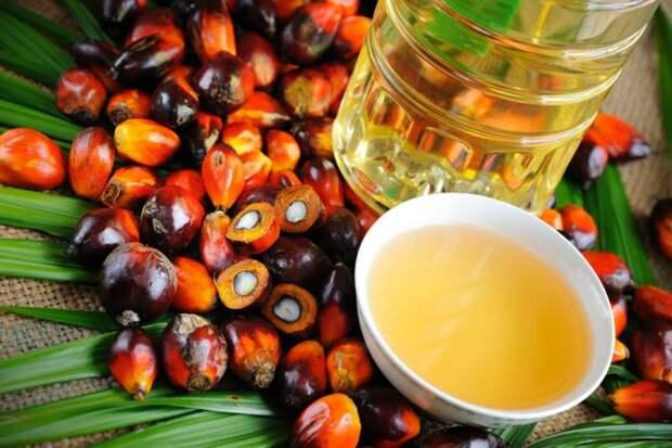 7 мифов о пальмовом масле