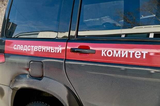 В Пермском крае 23-летнюю девушку обвиняют в убийстве пожилой пары