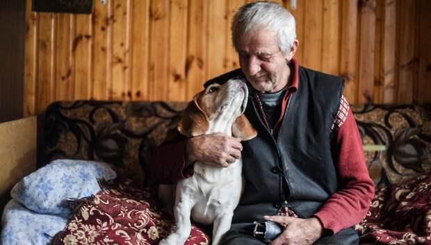 Названы главные потребности самоизолированных пенсионеров в Подмосковье