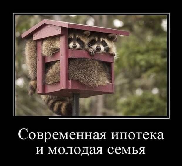 Демотиваторы Ипотека