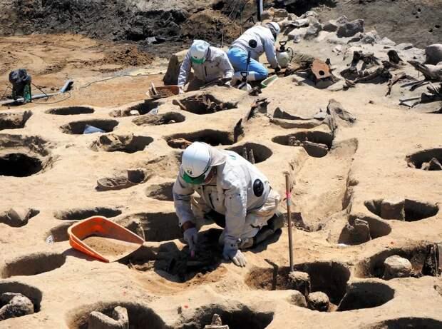 ВЯпонии обнаружили массовое захоронение стысячами скрюченных скелетов вмаленьких нишах