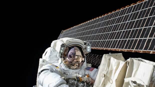 Космонавтам начнут удалять селезёнки перед полётом в космос