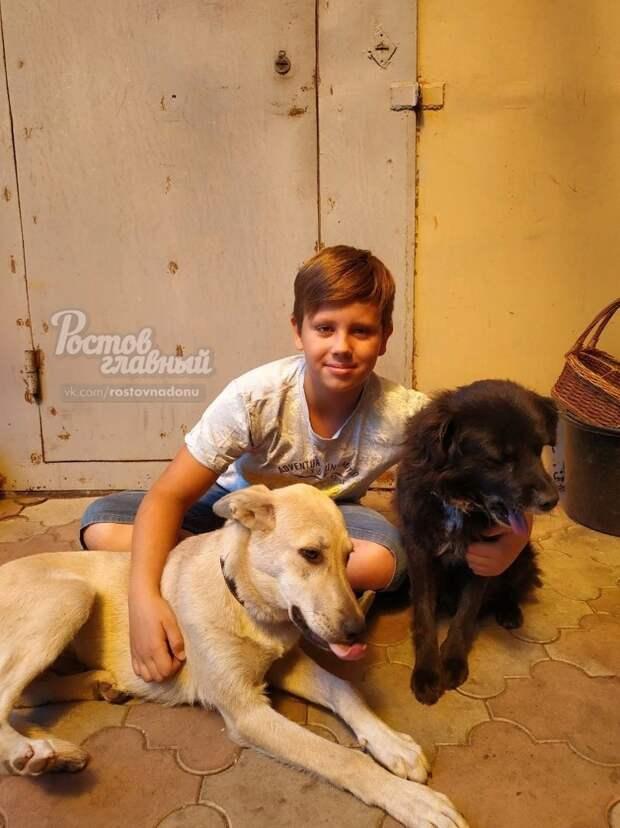 Арсений с собаками. Слева — Арчи, справа — Мишка воспитание, добро, животные, забота, лимонад, люди, собака
