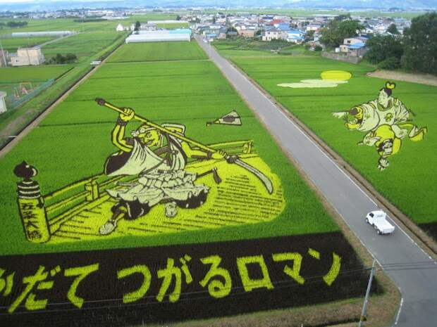 Искусство тамбо— невероятные картины нарисовых полях Японии