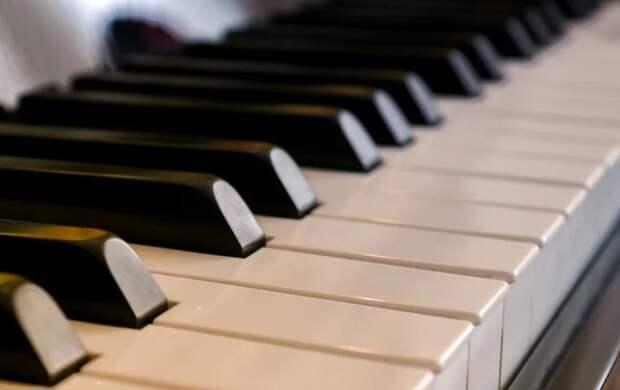 Фортепианный концерт для детей пройдет в Северном Фото с сайта pixabay.com