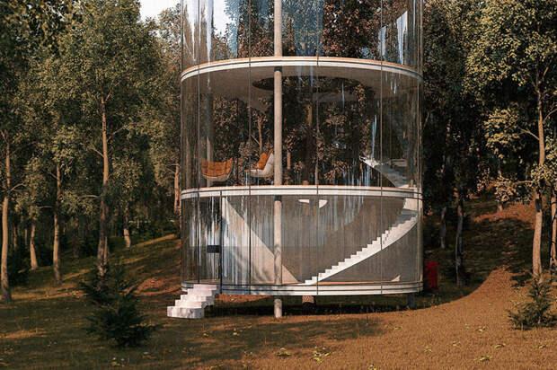 Казахский дизайнер спроектировал потрясающий стеклянный дом в виде... трубы вокруг дерева архитектор, дизайнер, дом, казахстан