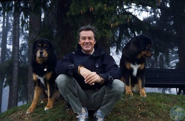 Ален Делон и его 35 собак