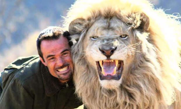 Лесник из заповедника жил рядом со львами, а через несколько лет они приняли его в стаю