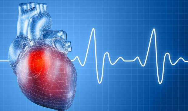 Чем опасно учащенное сердцебиение и каковы его симптомы? | BabyBen | Яндекс  Дзен