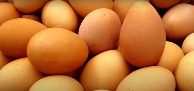 Свежесть яиц. Как определить, свежие ли куриные яца?