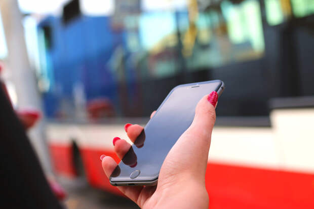 В Вышнем Волочке молодая девушка похитила сотовый телефон под предлогом покупки шаурмы