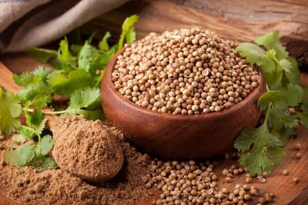 лекарственные растения от аллергии