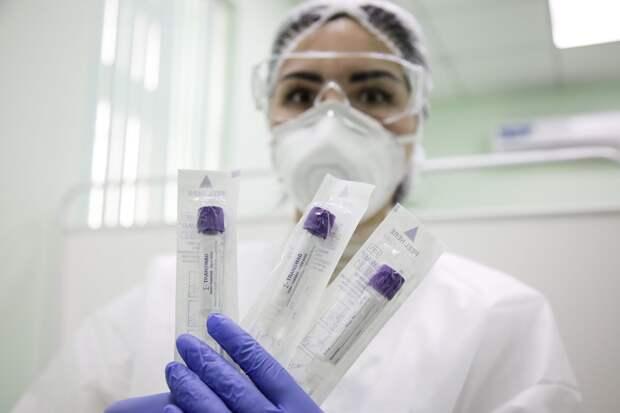 Ещё 8 человек заболели коронавирусом в Севастополе