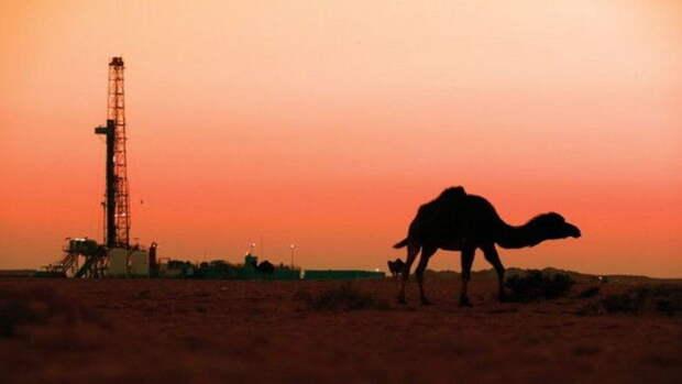 Нефтяная скважина на 123 тысяч баррелей в месяц заработала в Египте