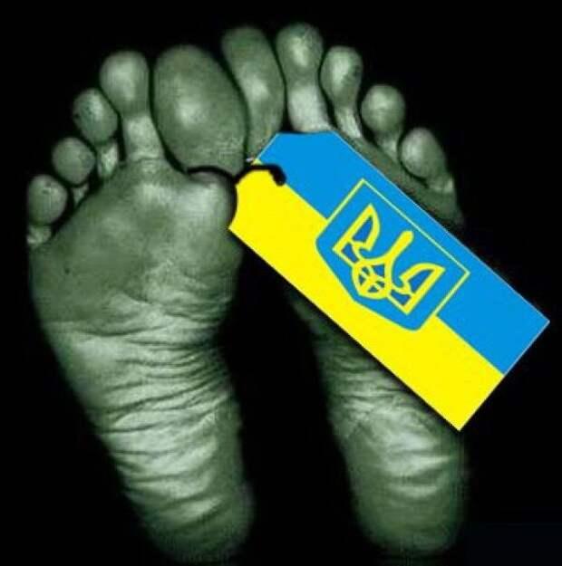 Численность населения Украины катастрофически сокращается