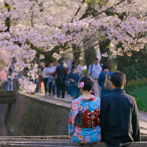 15 принципов жизни японцев