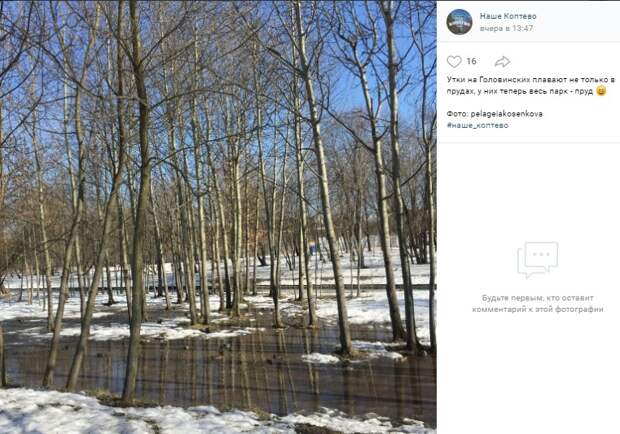 Фото дня: весь Головинский парк стал прудом