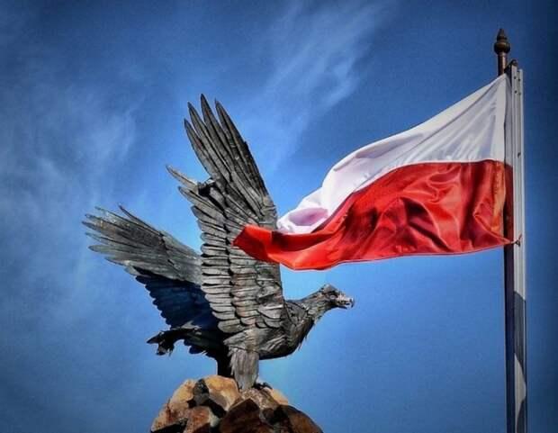 ВПольше приняли резолюцию оподдержке Украины