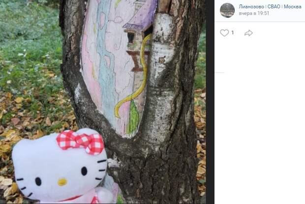 Фото дня: защитный рисунок на дереве в Лианозовском парке