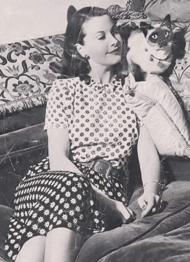 Вивьен Ли и ее сиамский любимчик