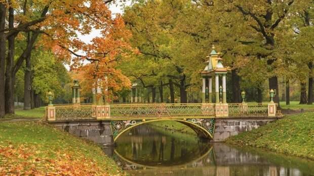 В каких парках лучше всего гулять по осеннему Петербургу?