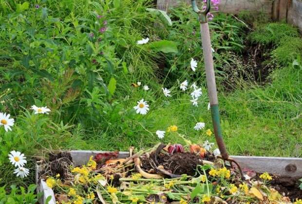 Пониженные участки: как приподнять огород