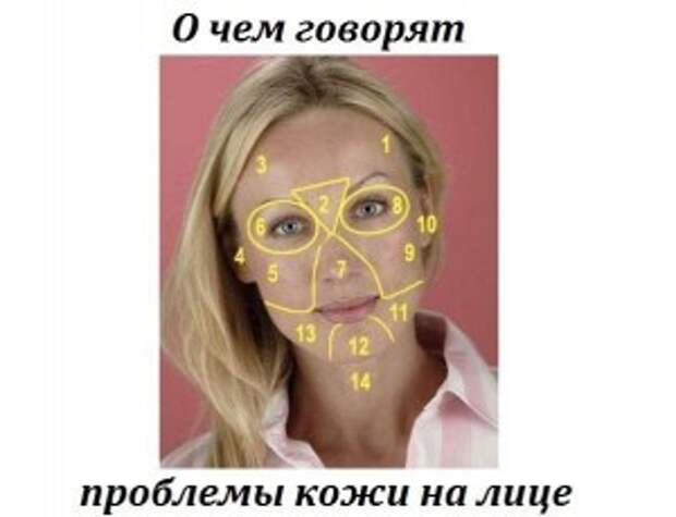 РАСШИФРОВКА КАРТЫ ЛИЦА