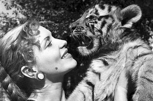 """Звезда """"Полосатого рейса"""": Как сложилась непростая судьба укротительницы тигров"""