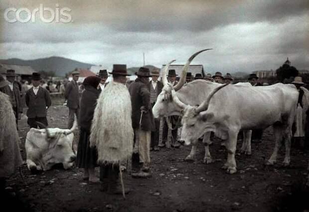 Карпатская Русь, какой ее мало кто видел: цветные фотографии 1927 года