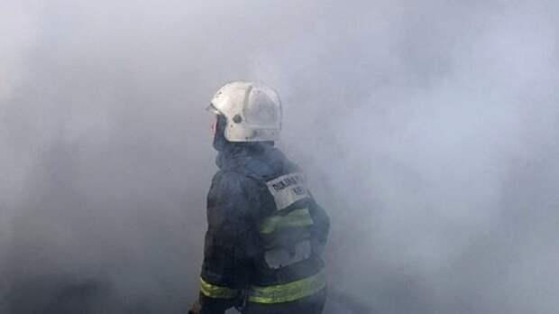 Спасатели нашли три трупа при тушении дома в Пензенской области