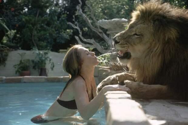 Невероятные фотографии из 70-х: Мелани Гриффит и лев Нил