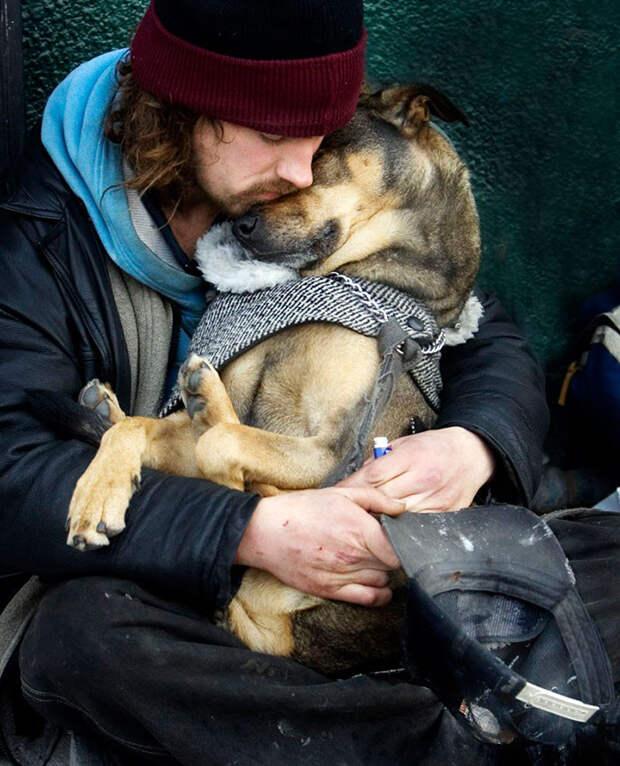 4. Сон в обнимку  бездомный, любовь, собака