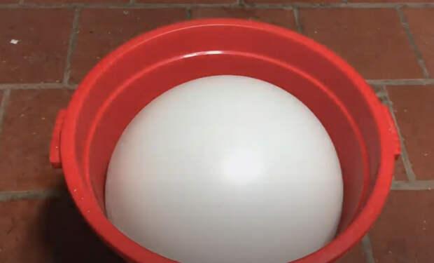 Как сделать мышеловку из воздушного шарика