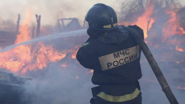 В России за сутки потушили 111 лесных пожаров